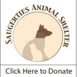 Saugerties Animal Shelter